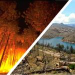 Left- burning forest, Right- post-fire landscape