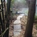 On the stepping stone path thumbnail