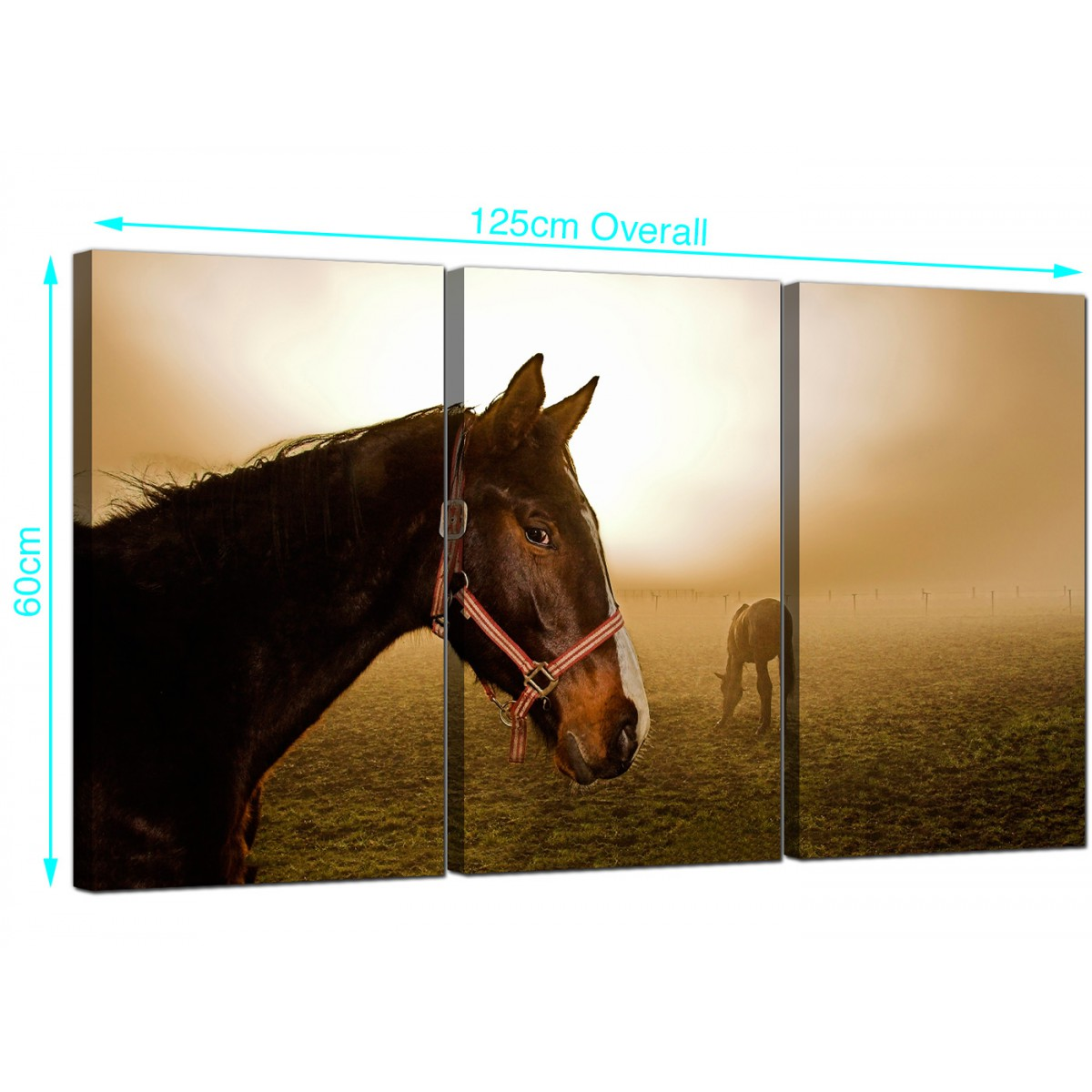 large canvas art for living room how to arrange furniture in a long narrow with corner fireplace horses 3 panel your
