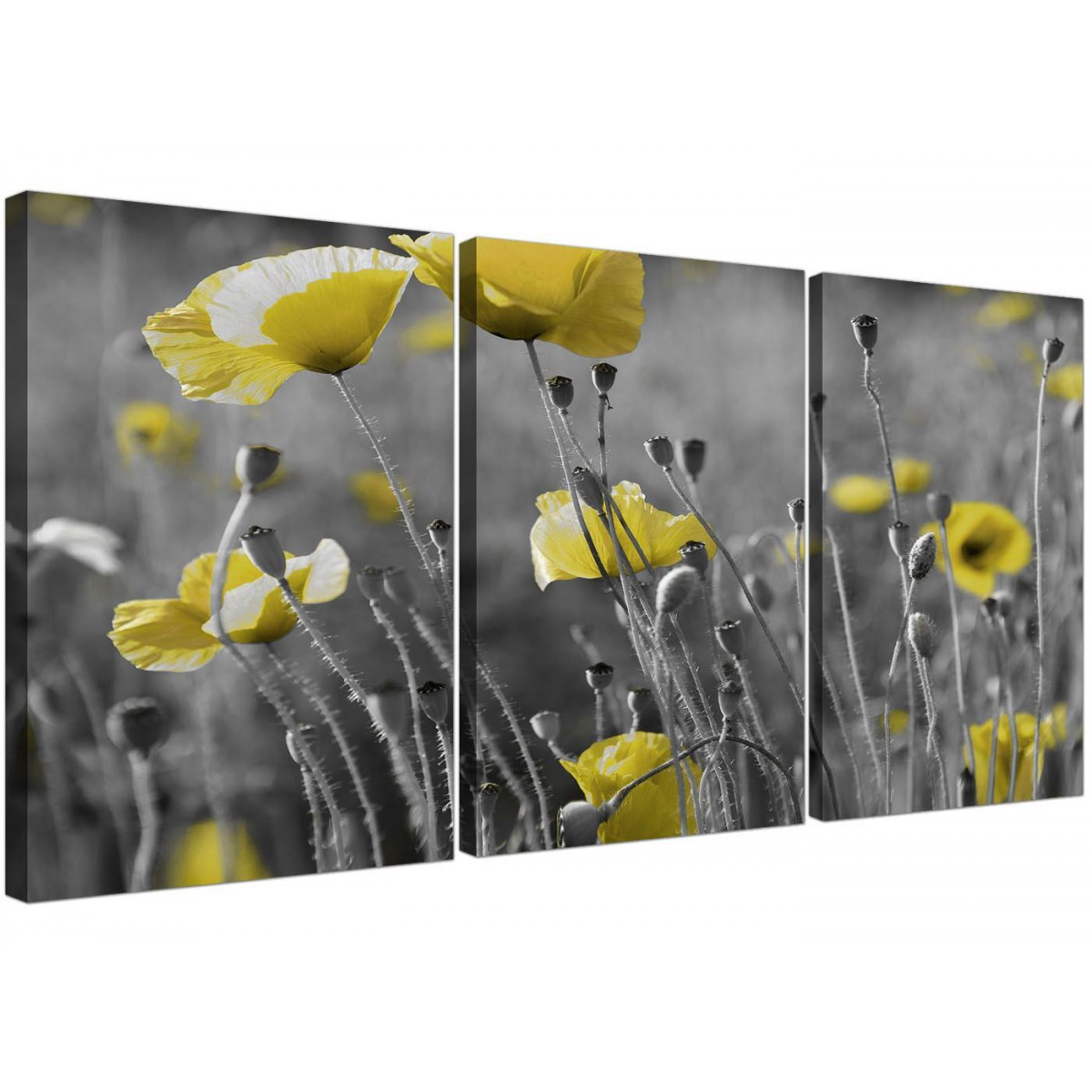 Black and White Canvas with Grey and Yellow Poppies Wall