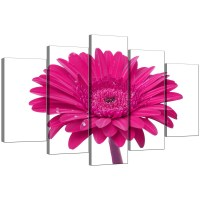 Pink Wall Art | Wall Plate Design Ideas