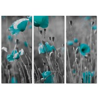 Teal Poppy Canvas Wall Art Set of 3 for your Dining Room