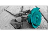 Modern Black and White Canvas Wall Art of a Teal Rose Flower