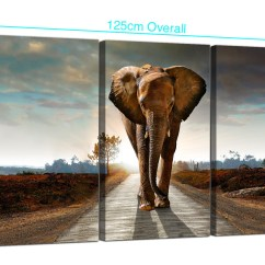Orange And Black Sofa Bed White Fabric Large African Elephant Canvas Prints 3 Part For Your Hallway