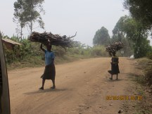 Women carrying firewood collected from a far away source