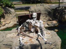 skeleton-72845_960_720