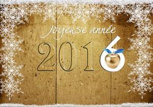 Joyeuse année 2016
