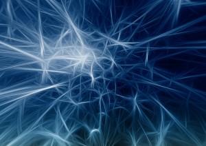 système neuronal