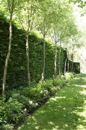 60 Fresh Backyard Landscaping Design Ideas on A Budget (57)