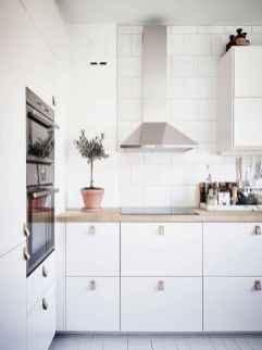 60 Glamorous Scandinavian Kitchen Decor Ideas (50)