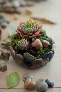 120 Easy And Simply To Try DIY Polymer Clay Fairy Garden Ideas (13)
