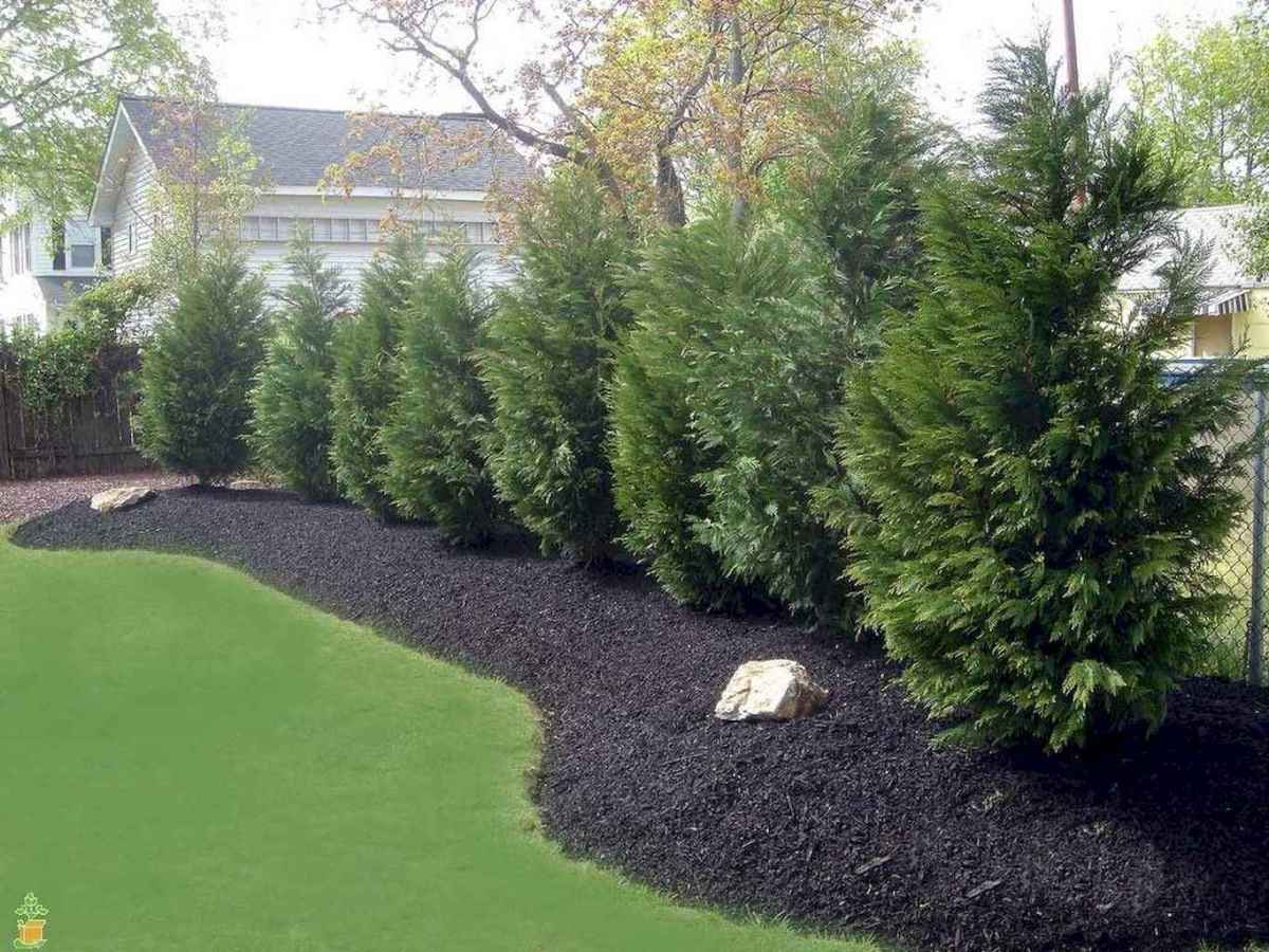 70 Gorgeous Backyard Privacy Fence Decor Ideas on A Budget (39)