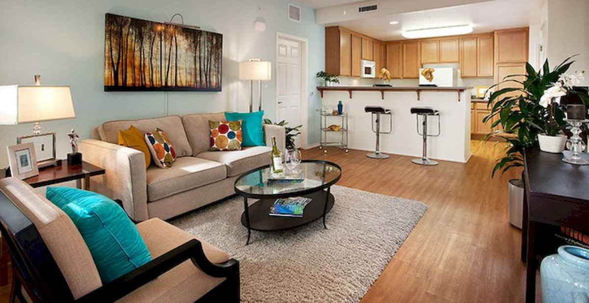 50 Beautiful Summer Apartment Decor Ideas And Makeover (18)