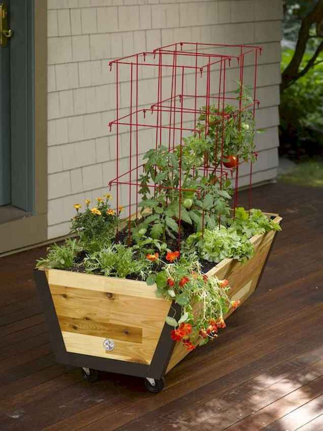 26 Creative Vegetable Garden Ideas And Decorations (26)