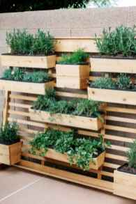 26 Creative Vegetable Garden Ideas And Decorations (8)