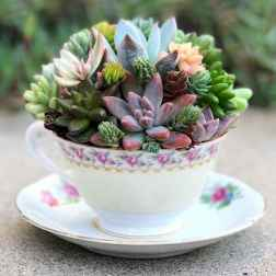 40 Easy DIY Teacup Mini Garden Ideas to Add Bliss to Your Home (5)
