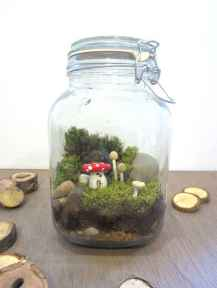 30 Beautiful Indoor Fairy Garden Ideas (17)