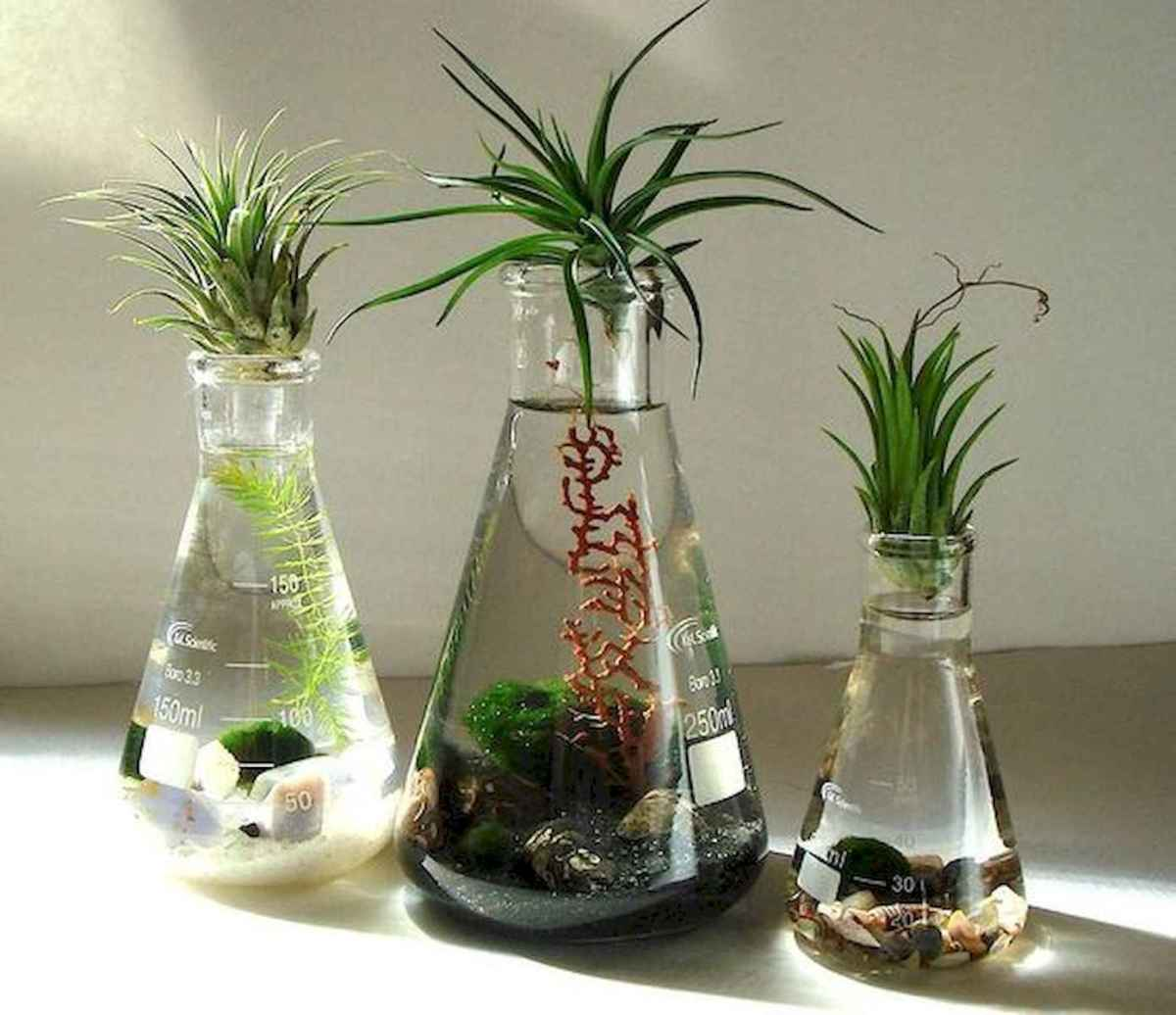 40 Easy To Try Hydroponic Gardening For Beginners Design Ideas And Remodel (15)
