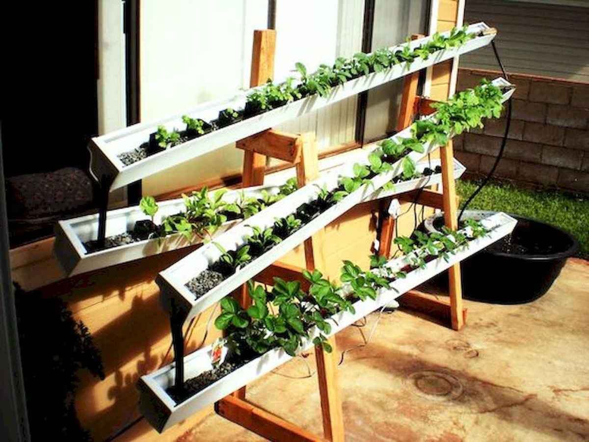40 Easy To Try Hydroponic Gardening For Beginners Design Ideas And Remodel (18)
