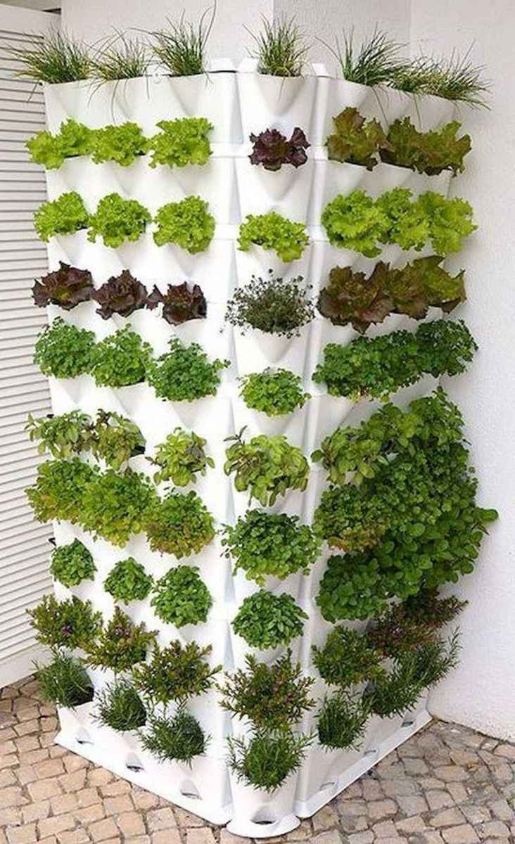 40 Easy To Try Hydroponic Gardening For Beginners Design Ideas And Remodel (20)