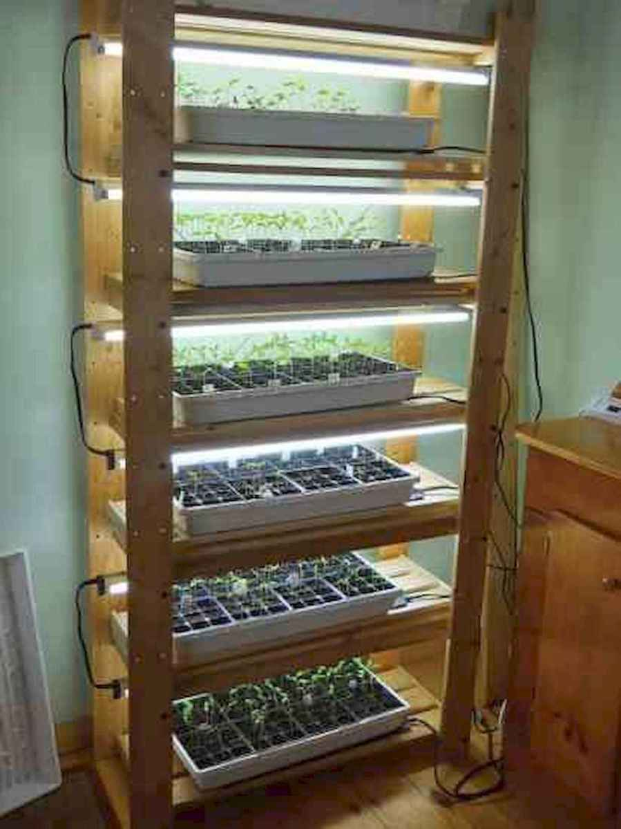 40 Easy To Try Hydroponic Gardening For Beginners Design Ideas And Remodel (21)