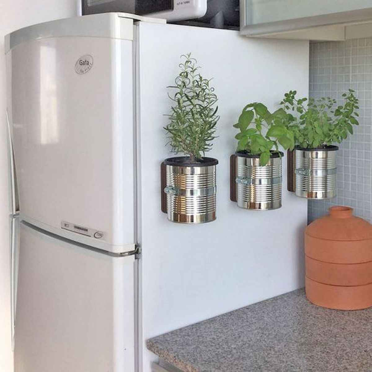 40 Easy To Try Hydroponic Gardening For Beginners Design Ideas And Remodel (28)