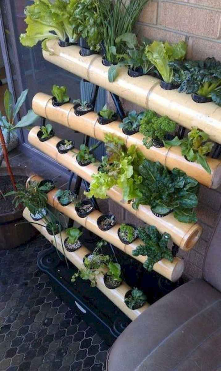 40 Easy To Try Hydroponic Gardening For Beginners Design Ideas And Remodel (38)