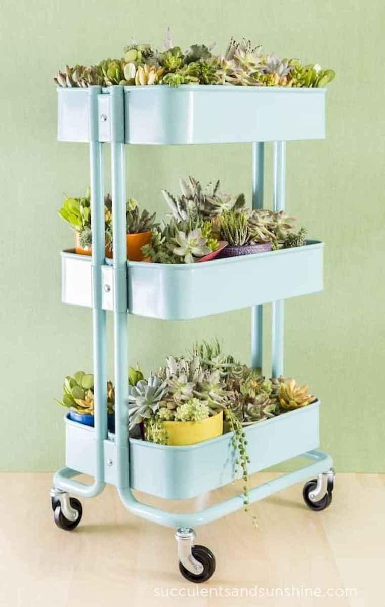 50 Best Indoor Garden For Apartment Design Ideas And Remodel (11)
