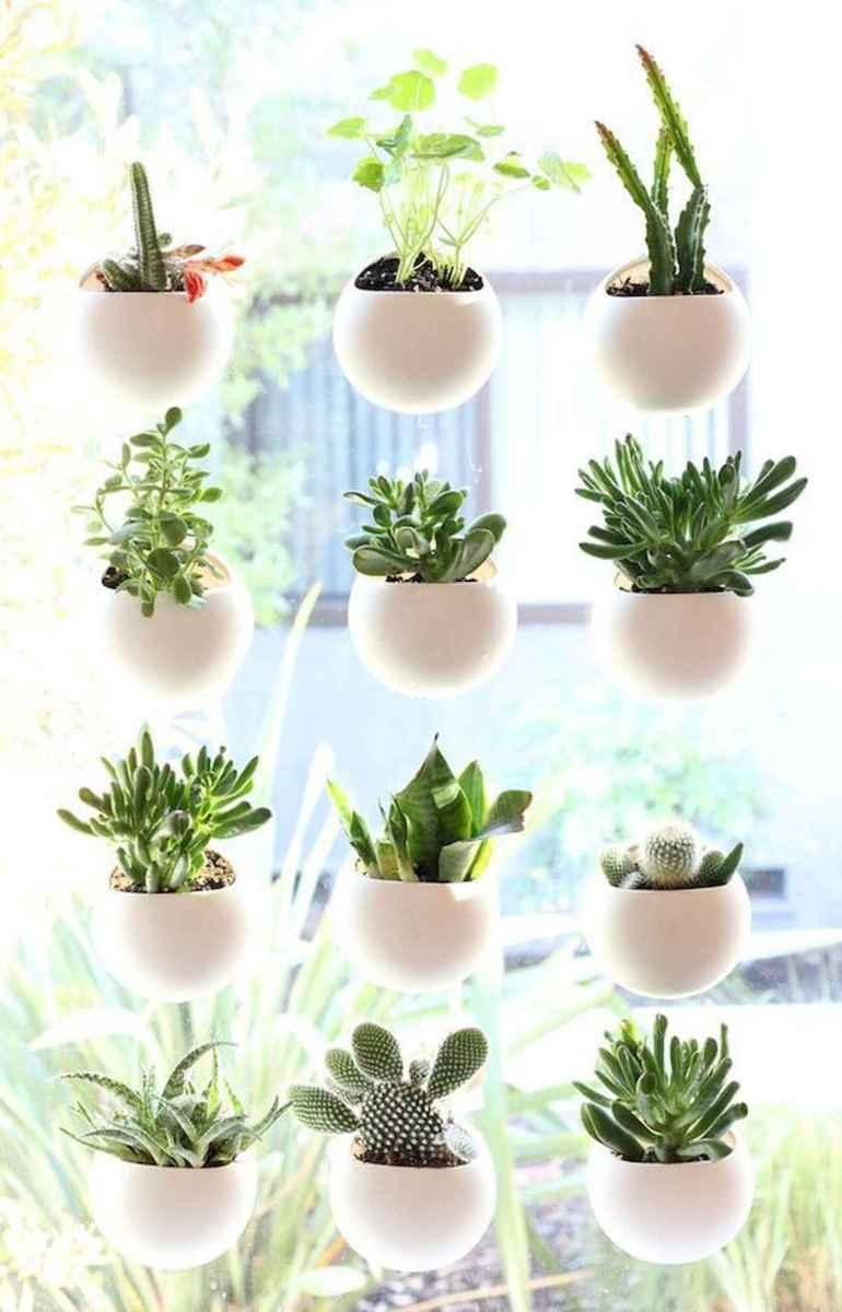50 Best Indoor Garden For Apartment Design Ideas And Remodel (29)