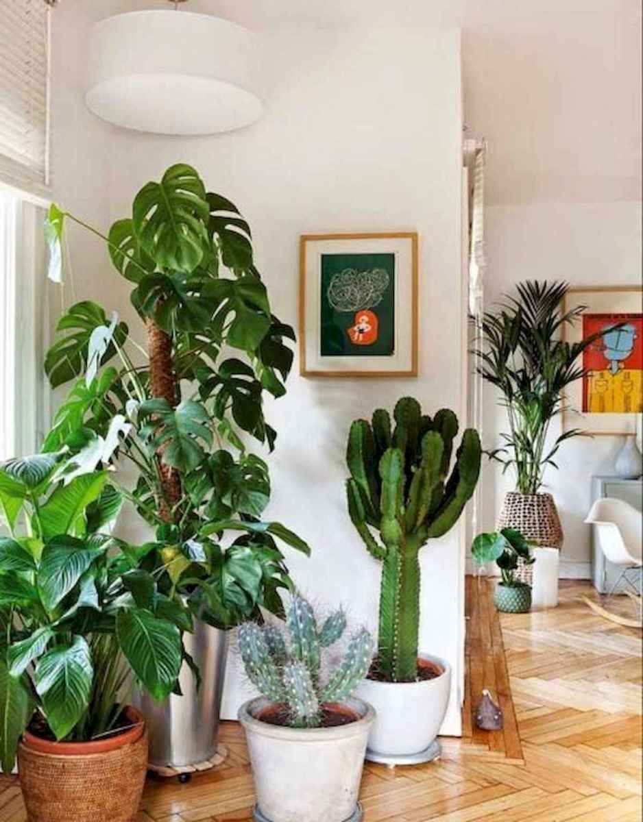 50 Best Indoor Garden For Apartment Design Ideas And Remodel (30)