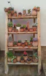 50 Best Indoor Garden For Apartment Design Ideas And Remodel (5)