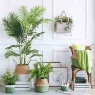 50 Best Indoor Garden For Apartment Design Ideas And Remodel (8)