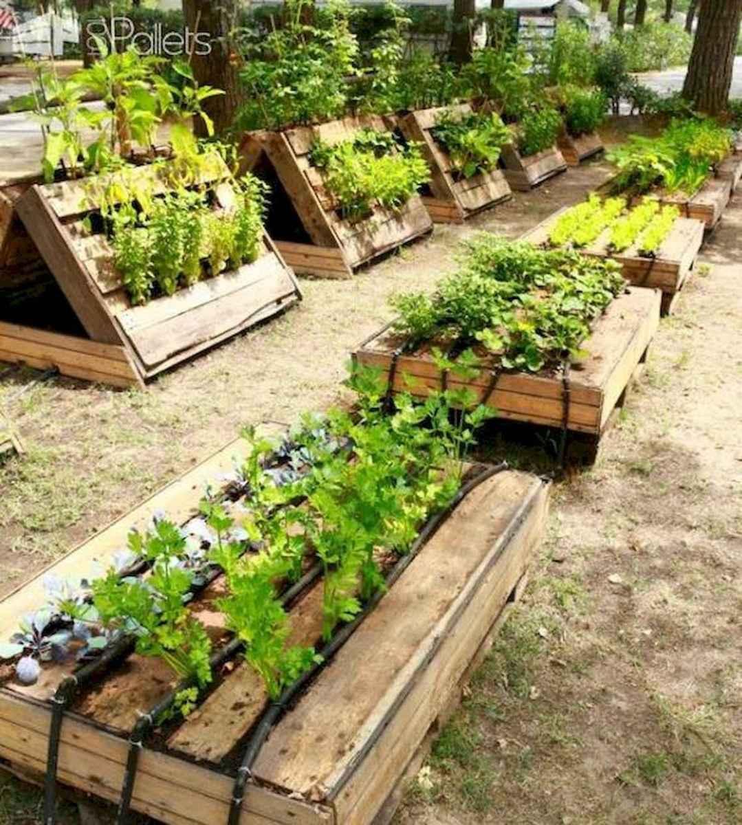 50 Inspiring Diy Projects Pallet Garden Design Ideas Coachdecor Com