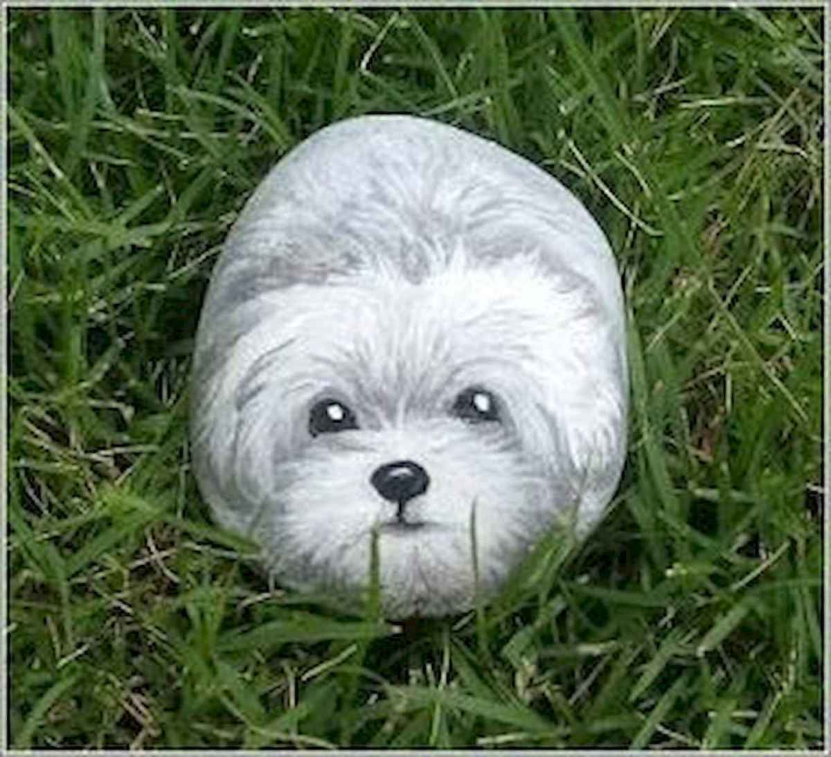 40 Awesome DIY Projects Painted Rocks Animals Dogs for Summer Ideas (32)
