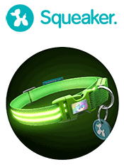 squeaker collar review