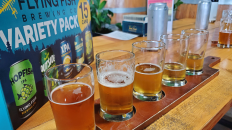 flying fish brewery review