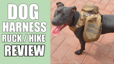 MOLLE Dog Harness Review