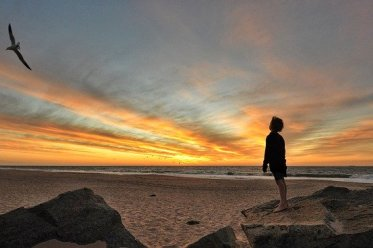 Traumatisierung: zehnjähriger Junge blickt in den Sonnenuntergang und einem Vogel nach
