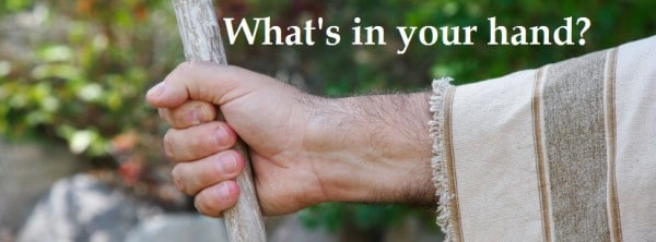 """""""What Is My Purpose?"""" (Part 1) – What's In Your Hand"""