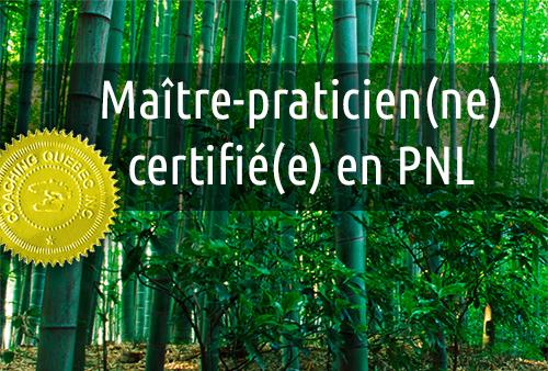 Maître-Praticien(ne) certifié(e) en PNL
