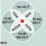 De la pasiune la profesie