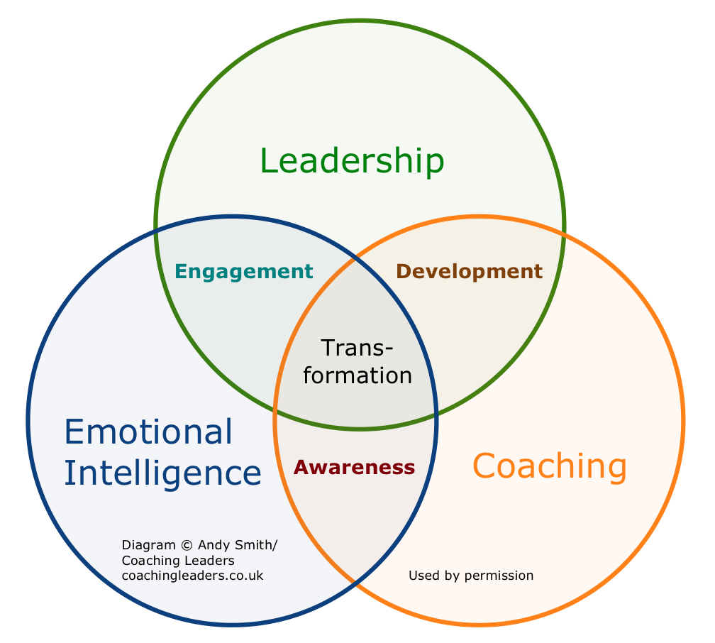 leadership emotional intelligence coaching