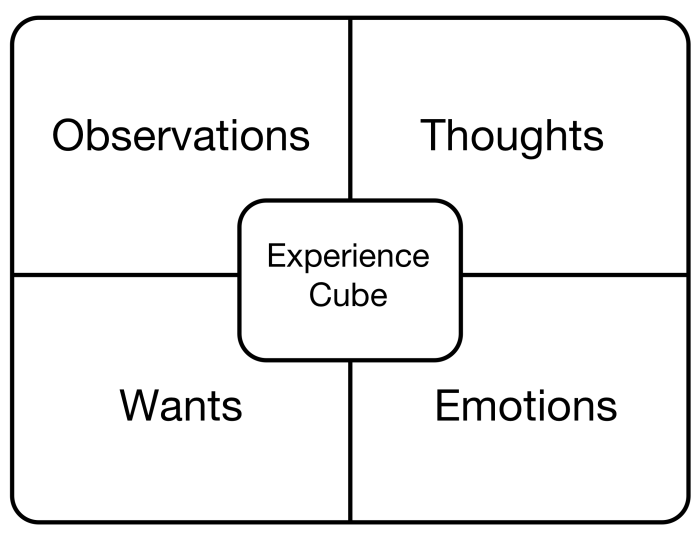 Experience Cube graphic