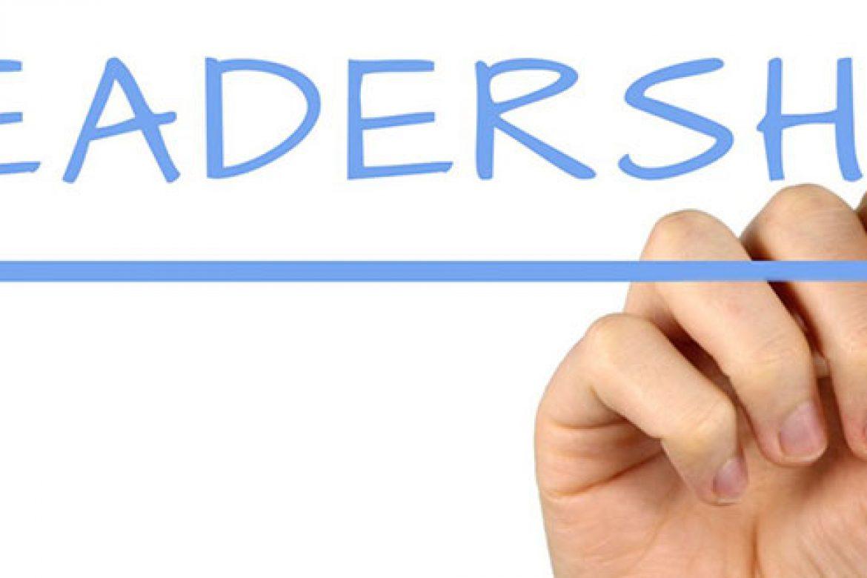 Leadership emergente e assegnata