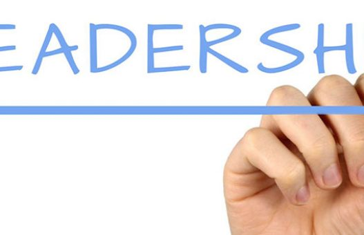 Leadership emergente e assegnata
