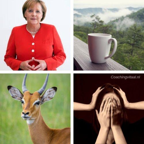 Het trillen van Angela Merkel, column bij Coaching Vitaal (1)