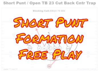 short punt single wing free play youth football