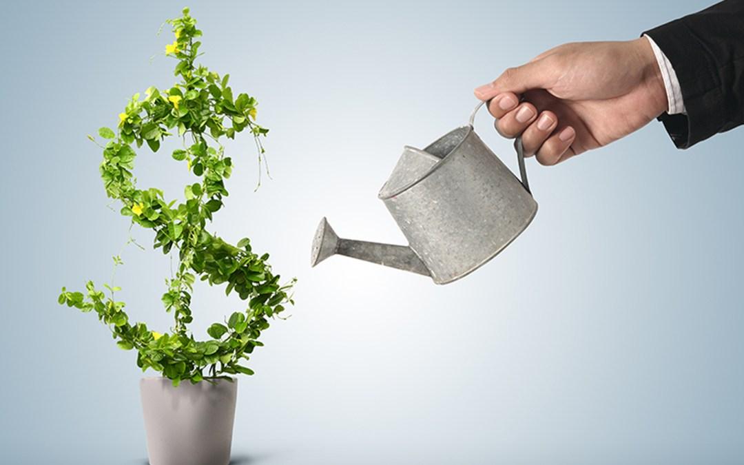 How To Create a Culture of Profitability
