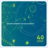 Phytoplankton microscopy courtesy of Bigelow Labs