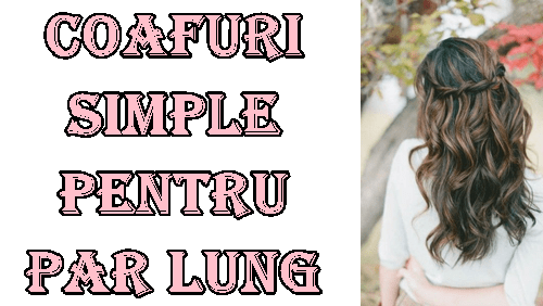 Coafuri par lung simple